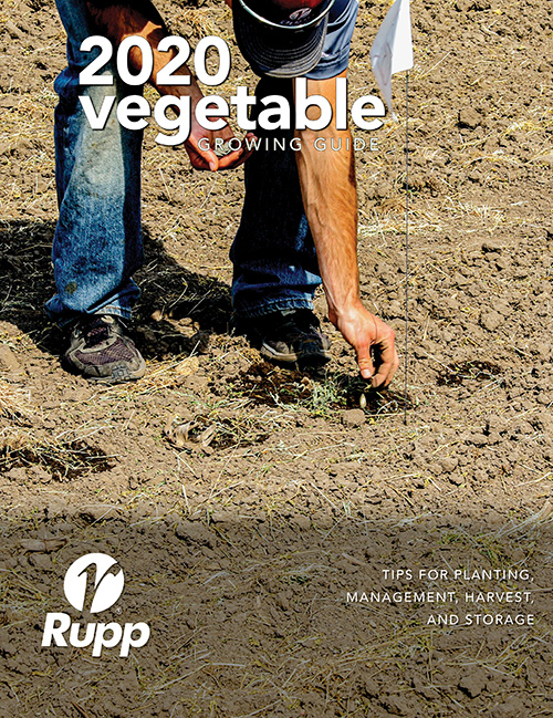 Cover of the 2020 Vegetable Growing Guide showing someone direct seeding pumpkins.