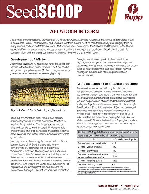 Screen shot image of SeedSCOOP publication discussing Aflatoxin in Corn.