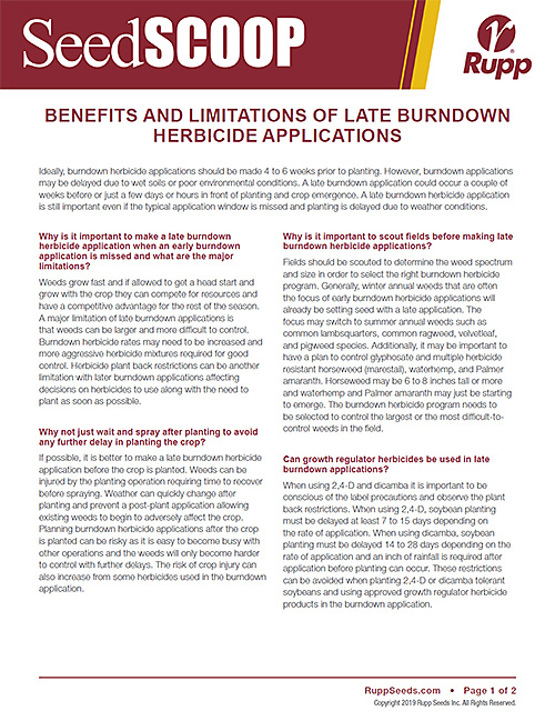 Screen shot image of SeedSCOOP publication discussing the benefits and limitations of late burndown herbicide applications.