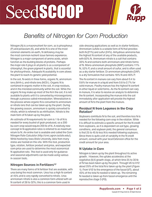 Screen shot image of SeedSCOOP publication discussing the benefits of nitrogen for corn production.