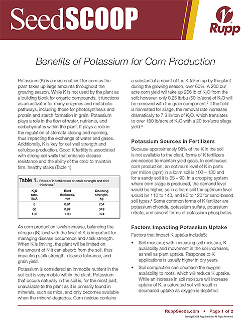 Screen shot image of SeedSCOOP publication discussing the benefits of Potassium for corn production.
