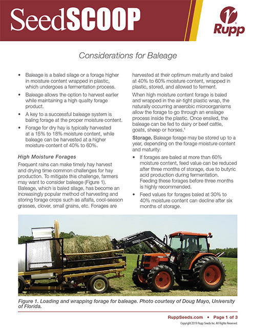 Screen shot image of SeedSCOOP publication discussing considerations for baleage.