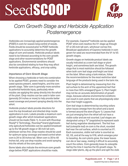 Screen shot image of SeedSCOOP publication discussing corn growth stages and herbicide application postemergence.