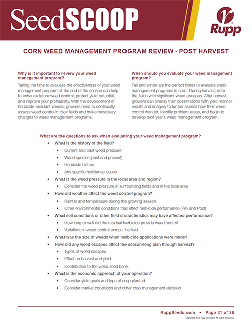 Screen shot image of SeedSCOOP publication discussing corn weed management program review.