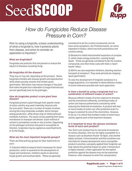 Screen shot image of SeedSCOOP publication discussing how fungicides reduce disease pressure in corn.