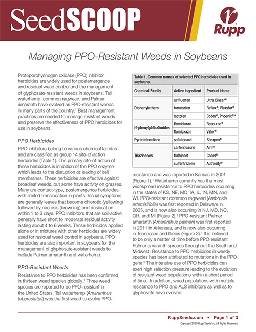 Screen shot image of SeedSCOOP publication discussing the management of PPO resistant weeds in soybeans.