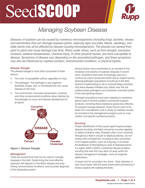Screen shot image of SeedSCOOP publication discussing managing soybean disease.