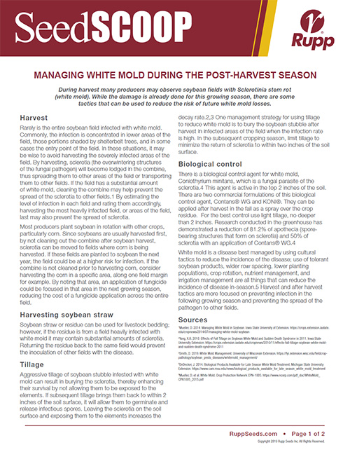 Screen shot image of SeedSCOOP publication discussing the managment of white mold during the post-harvest season.