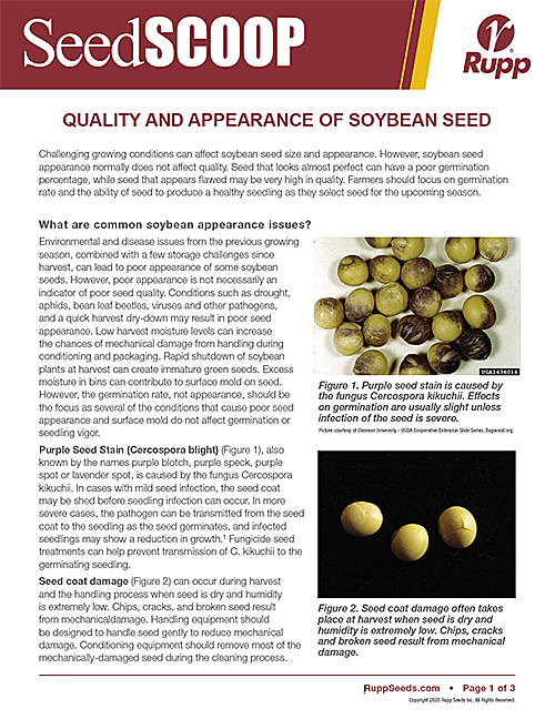 Screen shot image of SeedSCOOP publication discussing the quality and appearance of soybean seed.