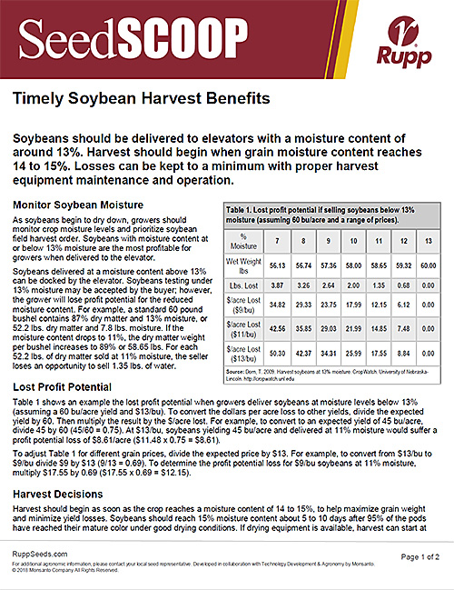 Screen shot image of SeedSCOOP publication discussing the benefits of timely soybean harvest.