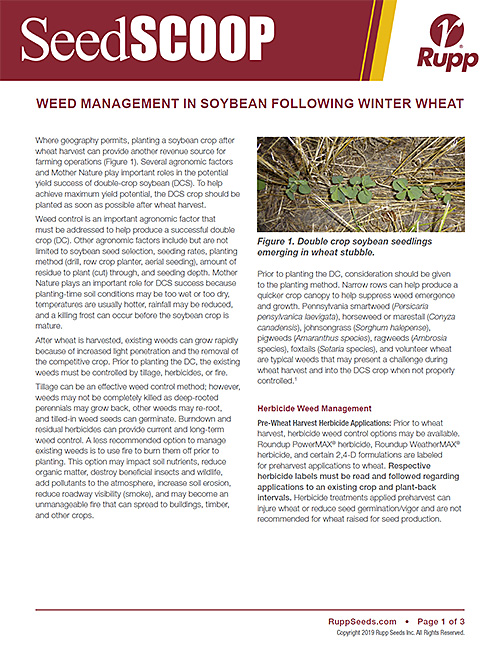 Screen shot image of SeedSCOOP publication discussing weed management in soybean following winter wheat.